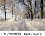 winter park with trees covered...   Shutterstock . vector #1026746311