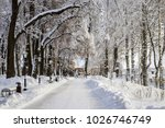 winter park with trees covered... | Shutterstock . vector #1026746749