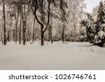 winter park with trees covered... | Shutterstock . vector #1026746761