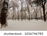 winter park with trees covered... | Shutterstock . vector #1026746785