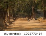 dusty road in sunset | Shutterstock . vector #1026773419