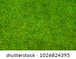 green grass background vignette ... | Shutterstock . vector #1026824395