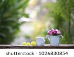 flowers in mini white water can ... | Shutterstock . vector #1026830854
