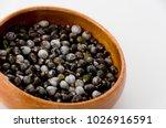 job's tears   coix lachryma... | Shutterstock . vector #1026916591