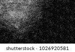 black and white texture of... | Shutterstock .eps vector #1026920581