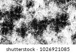 black and white texture of... | Shutterstock .eps vector #1026921085