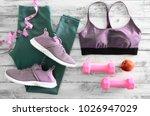 womens active clothes  leggings ... | Shutterstock . vector #1026947029