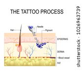 make a tattoo. how does it work.... | Shutterstock . vector #1026963739