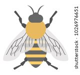 a cute cartoon honey bee  flat ... | Shutterstock .eps vector #1026976651