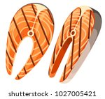 two pieces of grilled salmon... | Shutterstock .eps vector #1027005421