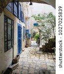 tel aviv  israel   january 2 ... | Shutterstock . vector #1027025839