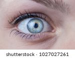 close up of a beautiful female... | Shutterstock . vector #1027027261