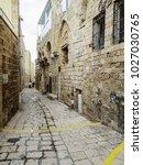 tel aviv  israel   january 2 ... | Shutterstock . vector #1027030765