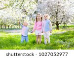 kids playing in blooming cherry ...   Shutterstock . vector #1027052977