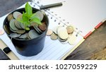 plant growing on money coins on ... | Shutterstock . vector #1027059229