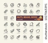 nuts  seeds and beans elements  ... | Shutterstock .eps vector #1027065391