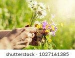 happy easter  spring background ... | Shutterstock . vector #1027161385