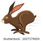 Stock vector vector illustration of a running brown rabbit 1027174024