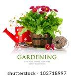 spring flowers with garden...   Shutterstock . vector #102718997