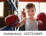 little boy in boxing gloves on...   Shutterstock . vector #1027214869