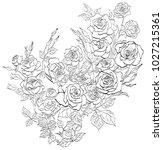 outline flowers.vector roses... | Shutterstock .eps vector #1027215361