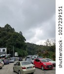 cameron highlands malaysia.17... | Shutterstock . vector #1027239151