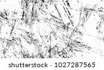 grainy black and white distress ... | Shutterstock .eps vector #1027287565