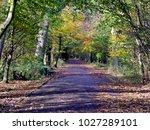 colours of autumn. | Shutterstock . vector #1027289101