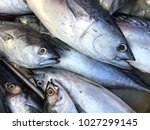 fresh saba fish in market.... | Shutterstock . vector #1027299145