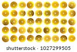 sequins set isolated on white.... | Shutterstock . vector #1027299505