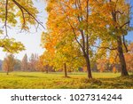 autumn landscape in the park.... | Shutterstock . vector #1027314244