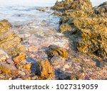 rocks on the beach  rocks in... | Shutterstock . vector #1027319059