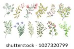 watercolor illustration. ... | Shutterstock . vector #1027320799