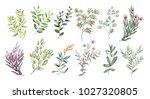 watercolor illustration. ...   Shutterstock . vector #1027320805