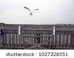 folly beach south carolina ... | Shutterstock . vector #1027328551