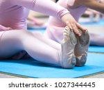 little ballerina pulled socks...   Shutterstock . vector #1027344445