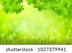 leaves and grass blades in... | Shutterstock . vector #1027379941
