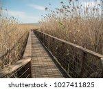 a wooden bridge in a swamp in... | Shutterstock . vector #1027411825