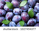 close up of fresh plums with... | Shutterstock . vector #1027454377