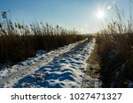 Dirt Road In Winter And Sun