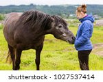 it is natural horsemanship  the ...