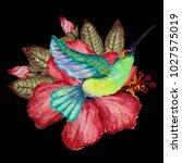 decorative watercolor colibri