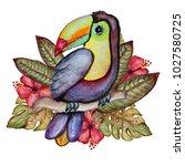 decorative watercolor toucan