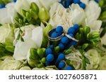 marriage concept. wedding rings ... | Shutterstock . vector #1027605871