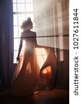 silhouette of a sexy woman girl ... | Shutterstock . vector #1027611844