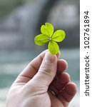 Stock photo four leaf clover 102761894