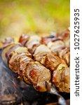 bbq meat prepare on fire  | Shutterstock . vector #1027625935