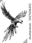 black and white engrave... | Shutterstock .eps vector #1027636351