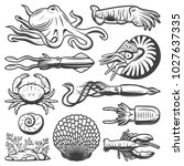 vintage marine life collection... | Shutterstock .eps vector #1027637335