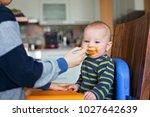cute preschool boy  feeding his ... | Shutterstock . vector #1027642639